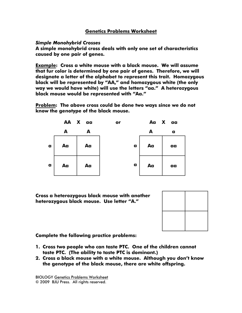 Genetics Problems Worksheet Simple Monohybrid Crosses A simple