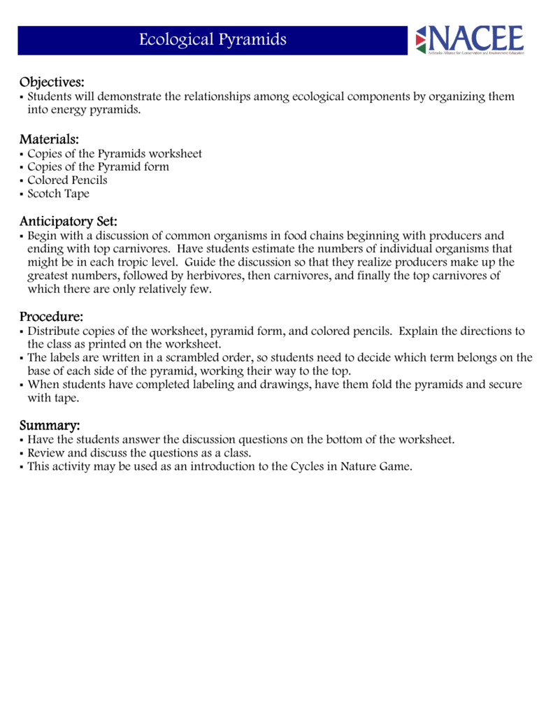 worksheet Ecological Pyramids Worksheet Answers ecological pyramids helena high school