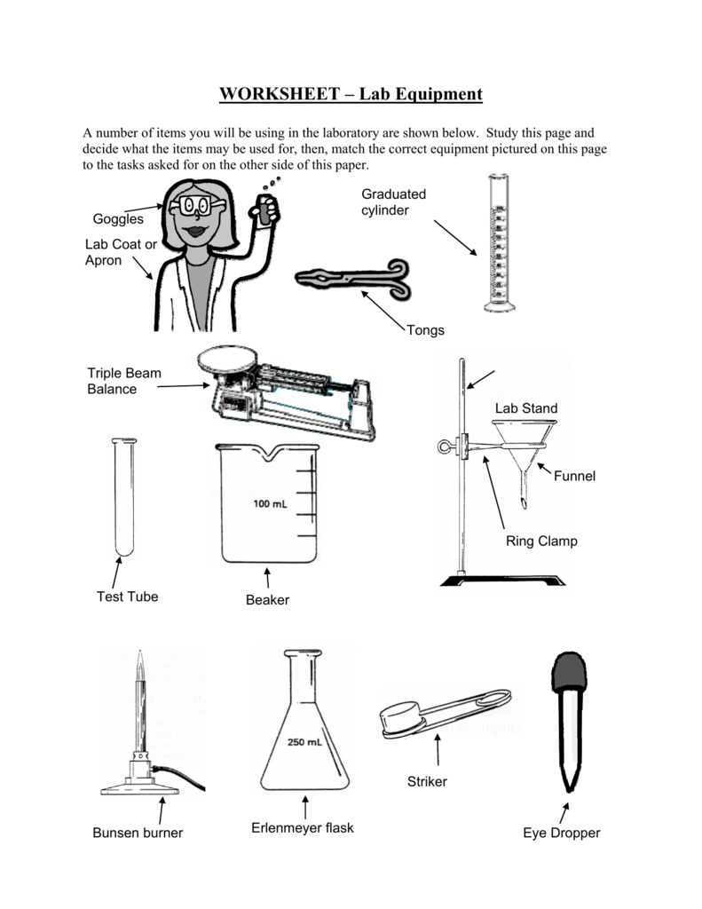 Worksheets Laboratory Equipment Worksheet worksheet lab equipment