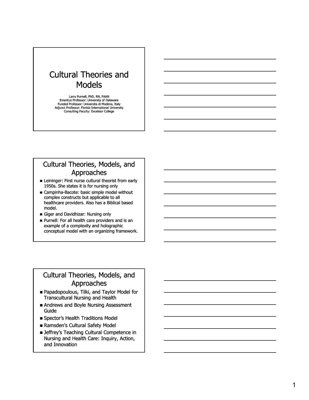 culturally competent nursing care examples