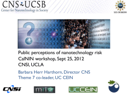 Public Perceptions of Nanotechnology Risk