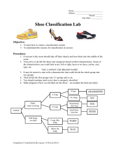 Shoe Classification Lab 2011-12