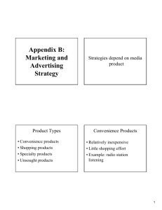 Appendix B: Marketing and Advertising Strategy