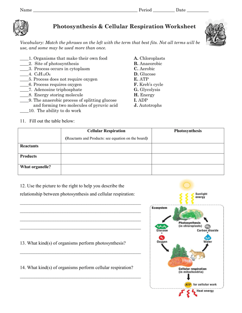 worksheet Reinforcement & Vocabulary Review Worksheets Answers workbooks reinforcement vocabulary review worksheets answers 008325636 1 9ccf1ef65b17e025b24db0aa1fcc1d86 png answers