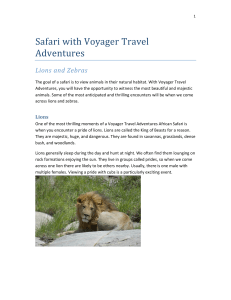 Safari with Voyager Travel Adventures