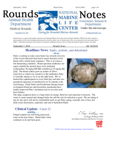 Clinical Update: Catch-22 - National Marine Life Center