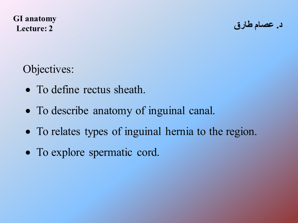 To define rectus sheath. • To describe anatomy of inguinal canal