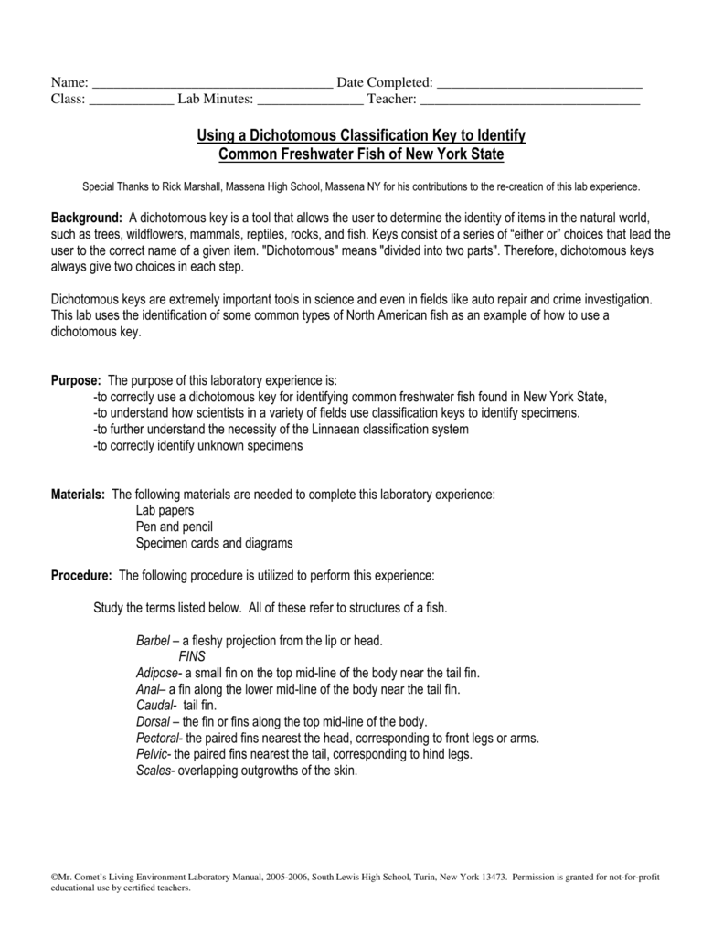 worksheet Fish Dichotomous Key Worksheet Answers using a dichotomous classification key to identify common