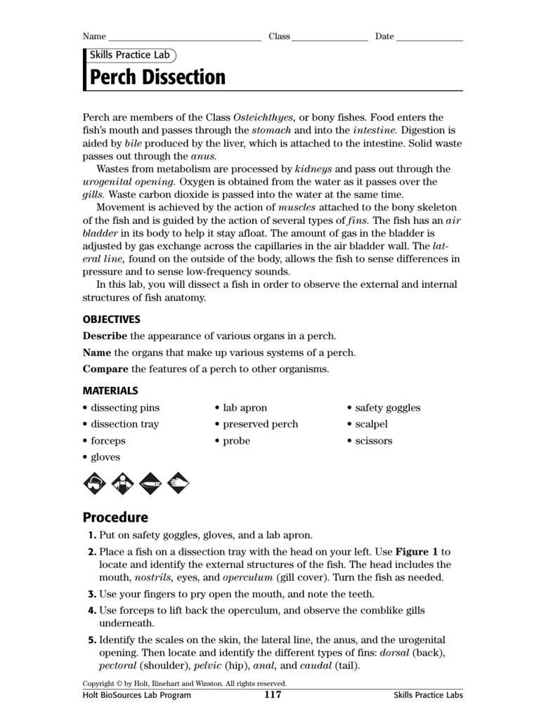 laboratory safety quiz answer key