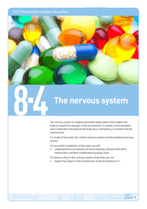 Topic guide 8.4: The nervous system