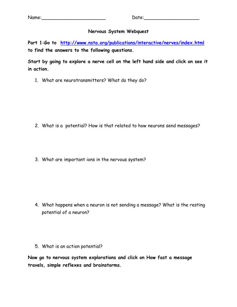 Name Date Nervous System Webquest Part 1go To Httpnsta