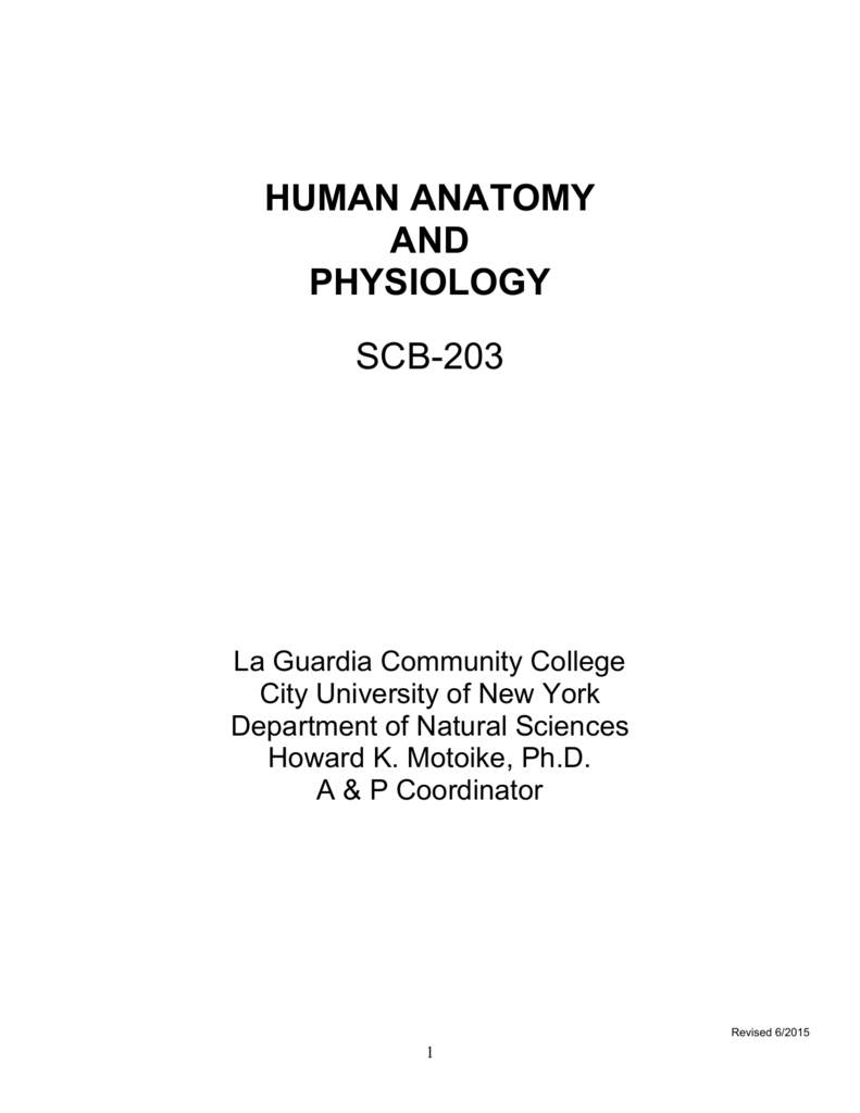 human anatomy and physiology scb-203