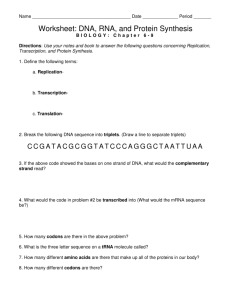 Worksheet: DNA, RNA, and Protein Synthesis