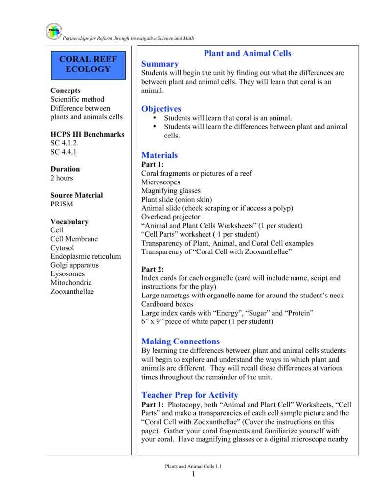 worksheet Plant And Animal Cells Worksheets plant and animal cells 1 1