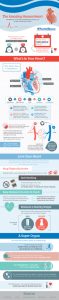 Heart infographic - NorthShore University HealthSystem