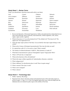 Study Sheet 1 – Review Terms Study Sheet 2 – Terminology Quiz