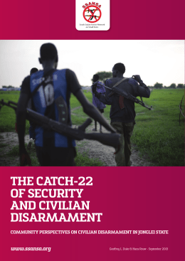The catch-22 of security and civilian disarmament