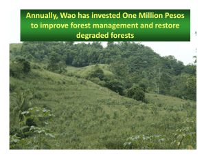 Annually, Wao has invested One Million Pesos to improve forest