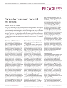 Nucleoid occlusion and bacterial cell division