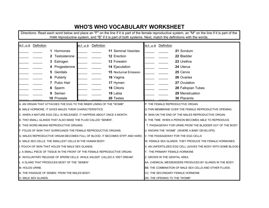 Whos Who Vocabulary Worksheet