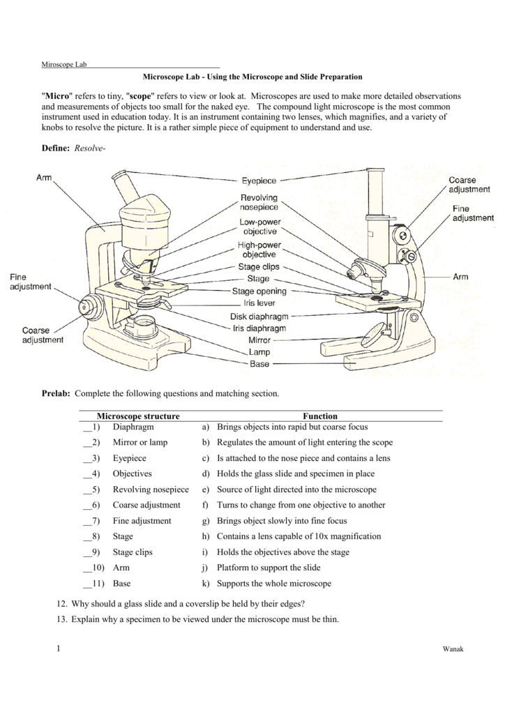Microscope E Lab - Biology Junction