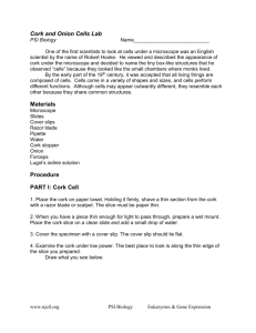 Cork and Onion Cells Lab Materials Procedure PART I: Cork Cell
