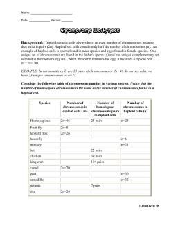 34 Chromosomes And Cell Reproduction Worksheet Answers ...