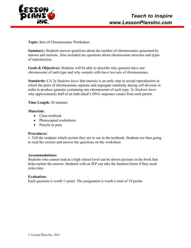 Chromosomes Worksheet – Chromosome Worksheet