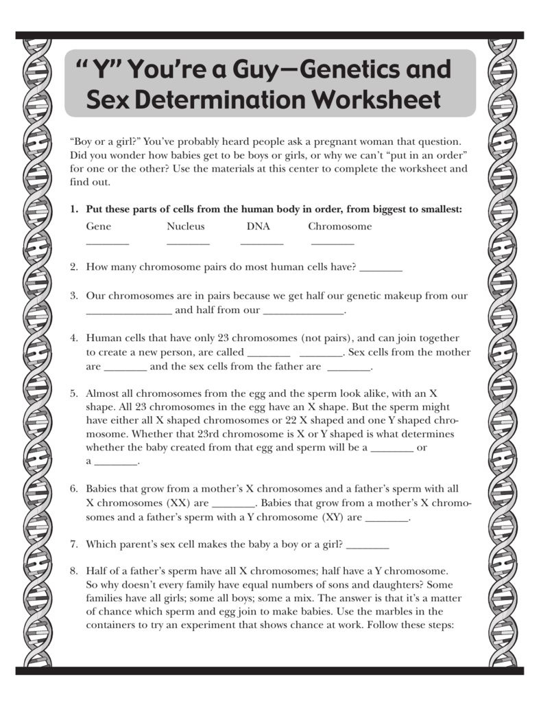 Y Youre a Guy Genetics and Sex Determination Worksheet – Chromosome Worksheet Answers