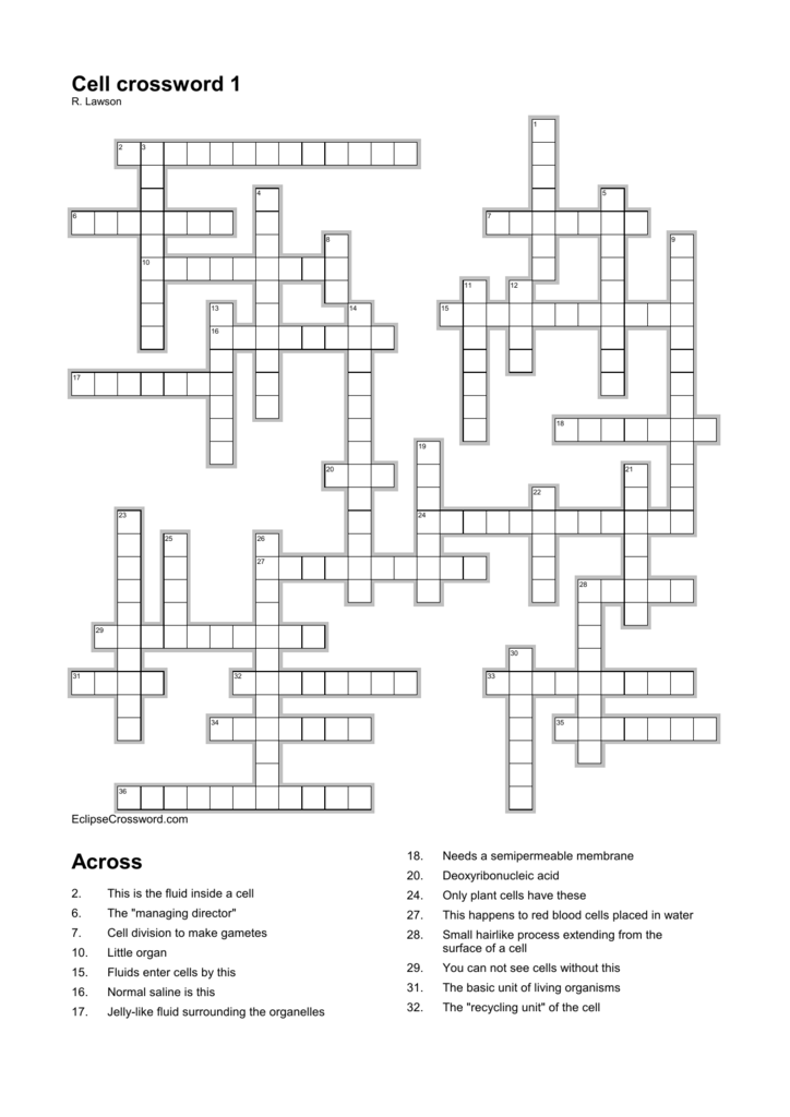 chapter 7 cell structure and function review crossword answer key