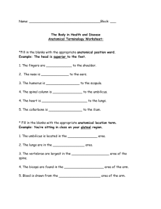 The Body in Health and Disease Anatomical Terminology Worksheet