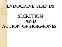 ENDOCRINE GLANDS SECRETION AND ACTION OF HORMONES