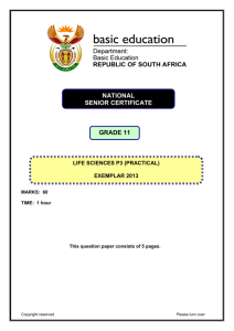 NATIONAL SENIOR CERTIFICATE GRADE 11