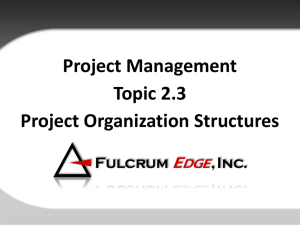 2.3 Project Organizational Structures