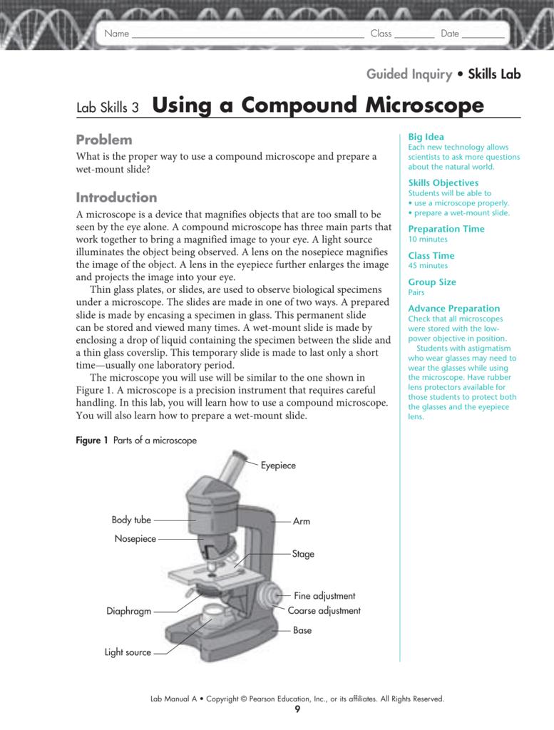 Lab Skills 3 Using A Compound Microscope