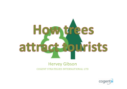 How trees attract tourists