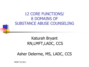 12 CORE FUNCTIONS/ 8 DOMAINS OF SUBSTANCE ABUSE