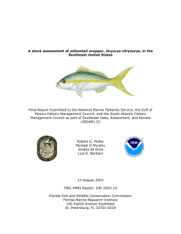 A stock assessment of yellowtail snapper, Ocyurus chrysurus, in the