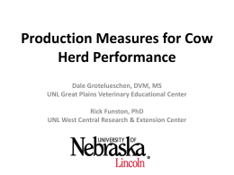 Production Measures for Cow Herd Performance