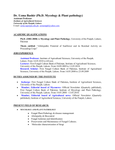 CV of Dr. Uzma Bashir - University of the Punjab