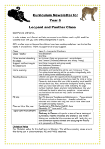 Curriculum Newsletter for Year 6 Leopard and Panther Class