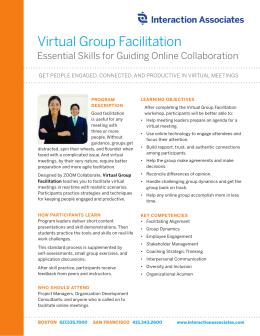 Virtual Group Facilitation