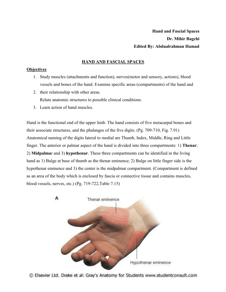 Hand and Fascial Spaces Dr. Mihir Bagchi Edited By