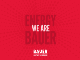 PDF - C.T. Bauer College of Business