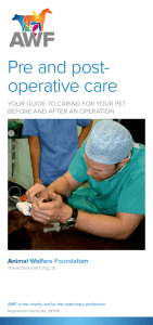 Pre and post- operative care - The Animal Welfare Foundation