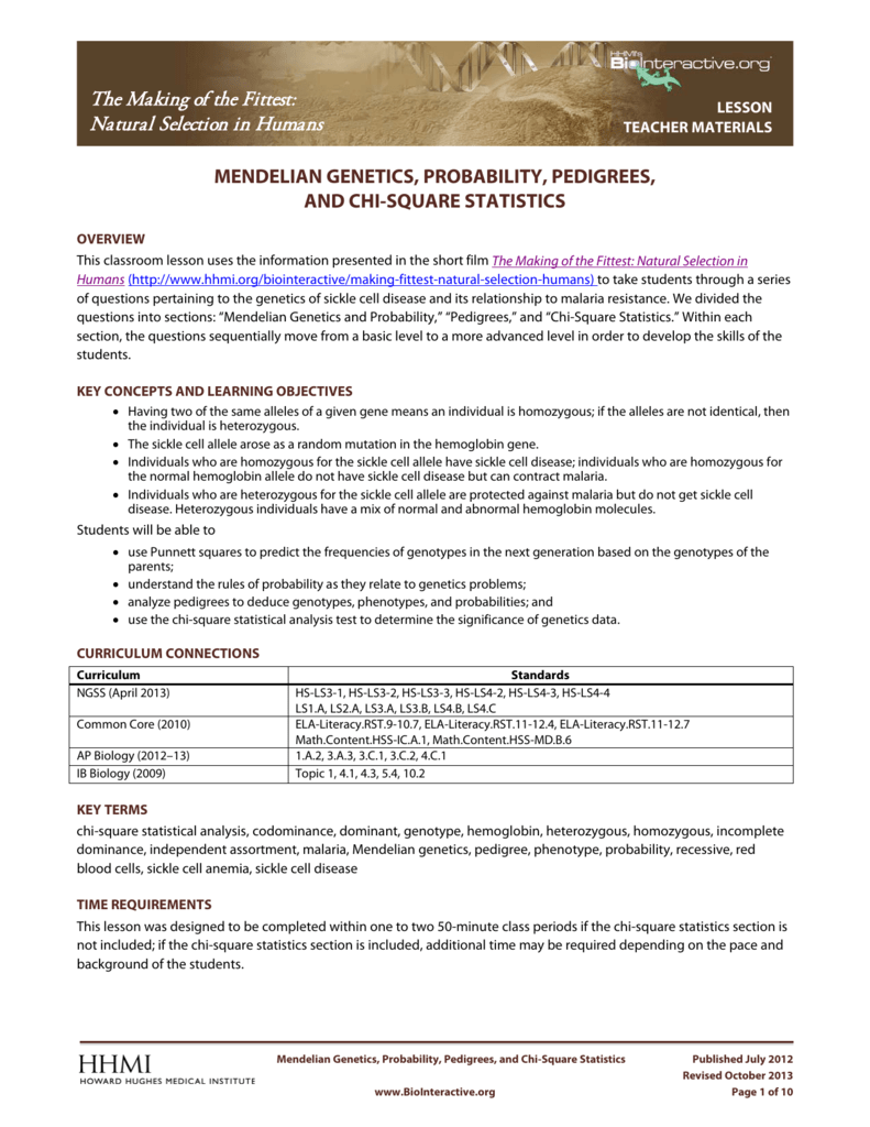 worksheet Genetics And Probability Worksheet mendelian genetics probability pedigrees
