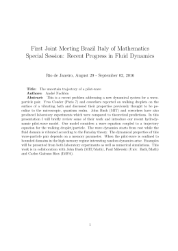 First Joint Meeting Brazil Italy of Mathematics Special Session