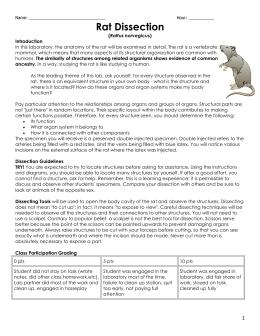 virtual rat dissection guide. Black Bedroom Furniture Sets. Home Design Ideas