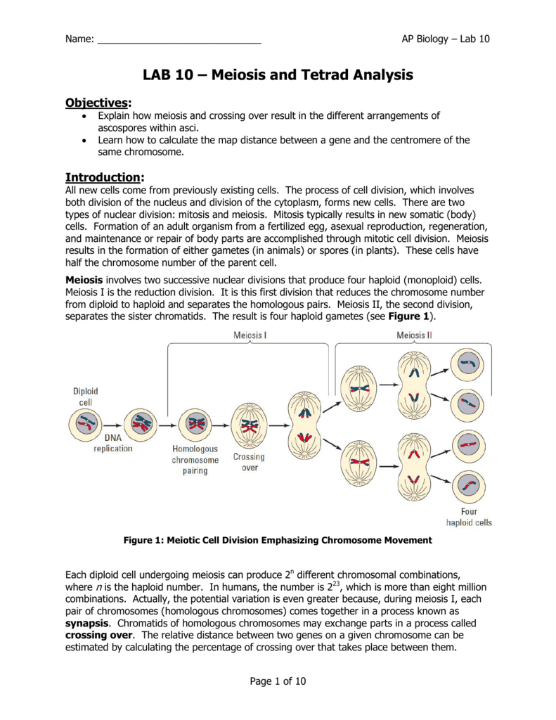 bio110 study guide The biology lab primer reiterates core information from lecture in a hands-on system focusing on the most essential concepts in protein structure and function.