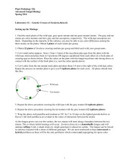 Sordaria fimicola lab report